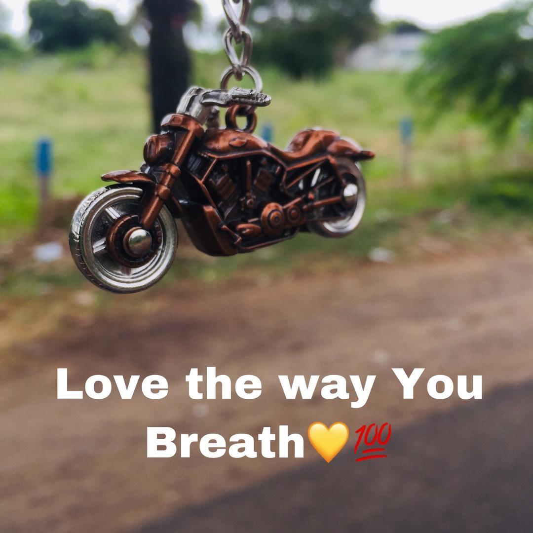 Rider_of_beast4143