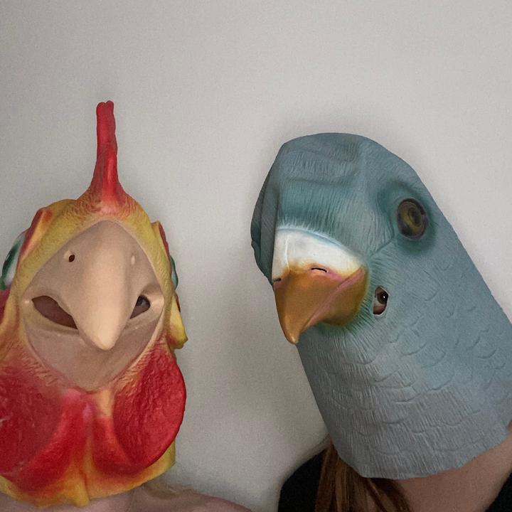 the masked dancers