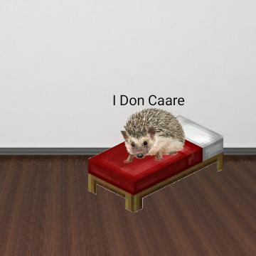 @carelesshedgehog